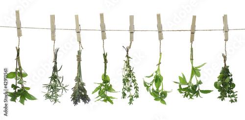 Obraz na Szkle Fresh herbs hanging on a rope