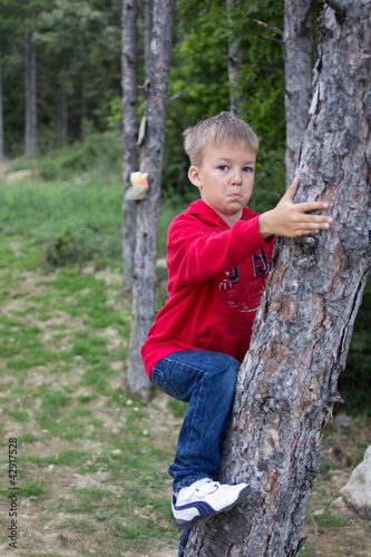 Happy child gets on a tree in the wood