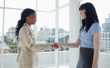 Two businesswomen shaking hands while smiling to each other