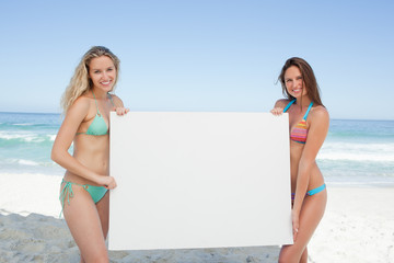Two friends holding a blank poster by the sea