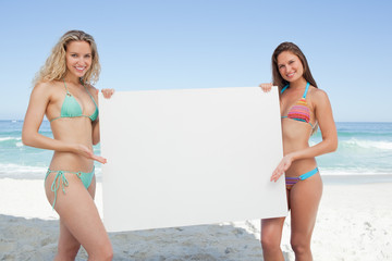 Two friends smiling while holding a blank poster by the sea