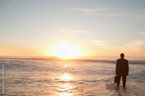 Businessman standing in the water while holding a briefcase