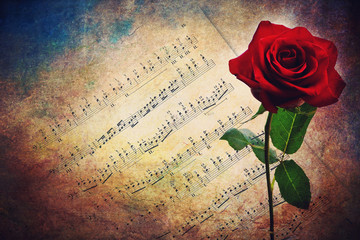Antique musical score with red rose