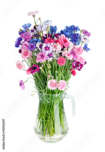 canvas print picture Bouquet of many beautiful multi-colored cornflowers flowers  in