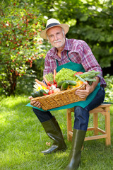 Proud senior gardener with a basket of vegetables