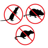 Rats of the mouse rodents will lock stop a symbol poster