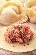 Homemade meat dumplings on a cutting board