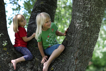 2 Kinder im Baum