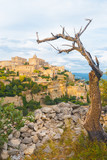 Gordes Provence Stone Village Tree Framed
