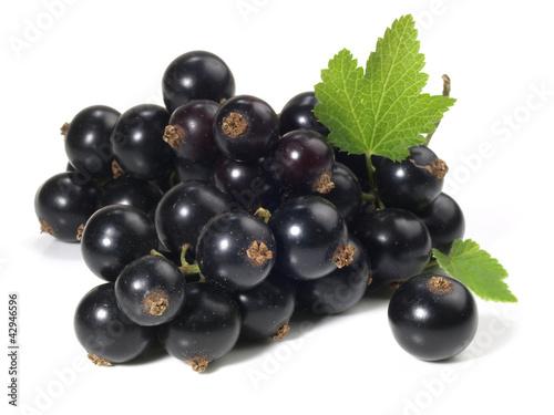 Johannisbeeren - schwarz