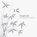 Fototapety vector Bamboo