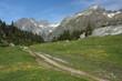 footpath in vall de benas