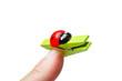 ladybug clothespin on finger
