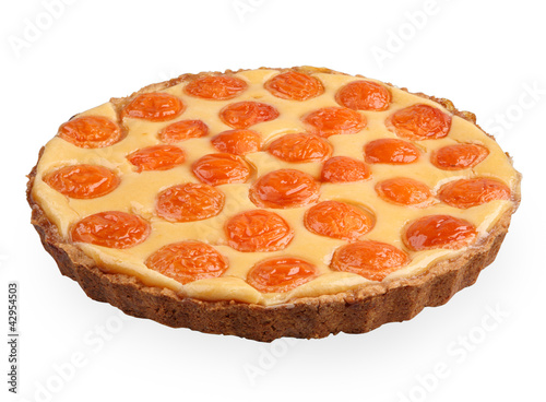 apricort tart isolated on white side view