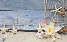 Wellness am Strand: Seerose und Strandgut