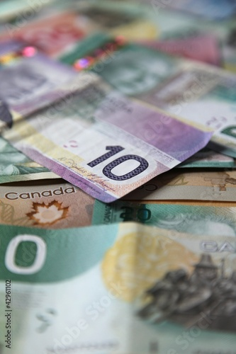 Stillife of Canada's ten dollar bank note