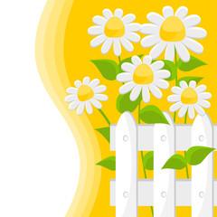 sfondo con fiori bianchi