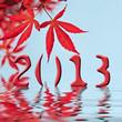 2013, feuilles rouges et reflets