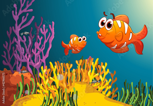 fish in a deep water