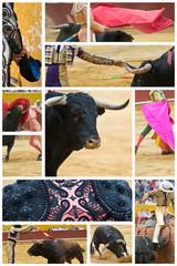 El mundo del toro.