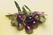 Olivas con sus hojas cubiertas de aceite virgen.