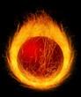 Fire works ball. Illustration on black background for design