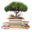 libros y árbol, concepto