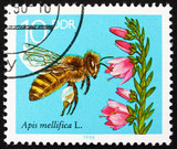 Postage stamp GDR 1990 Blooming Heather, Bees Collecting Nectar