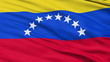 Waving national flag of Venezuela