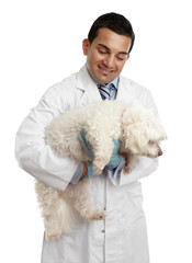 Veterinarian carrying a small dog
