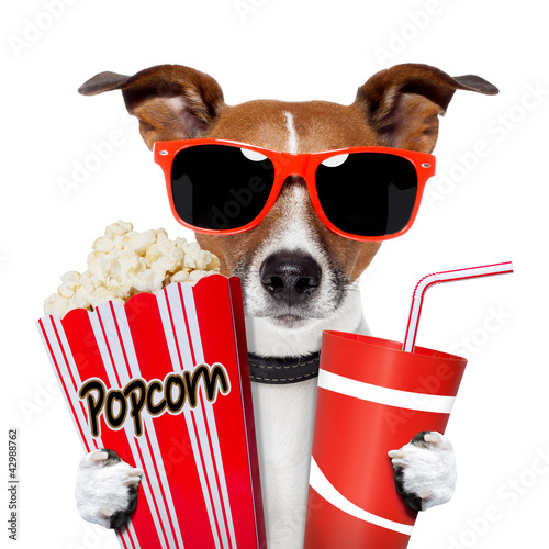 Poster dog watching a movie