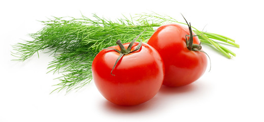 Tomatoes and dill on white background