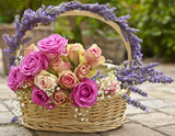 Fototapety Rosen, Lavendel