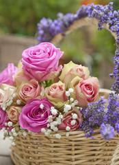 Rosen, Lavendel