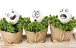 White eggs with funny faces on green bushes