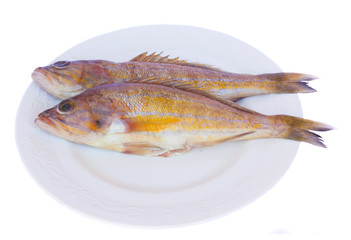 fresh fish on plate