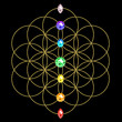 Chakra - Blume des Lebens - Energie Symbol