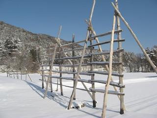 雪に刺さる木製の柵