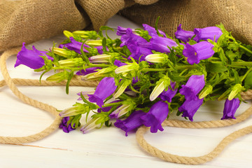blue bell flowers and burlap on white wooden background