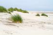 Fototapeten,düne,düne,sand,sandstrand