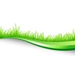 illustration of green grass