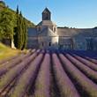 Abbaye de Sénanque #1