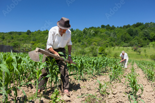 Family working the land