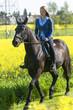 stolzes Pferd mit Reiterin