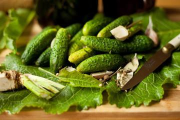 ogórki,małosolne,ogórek,zielony,małosolny