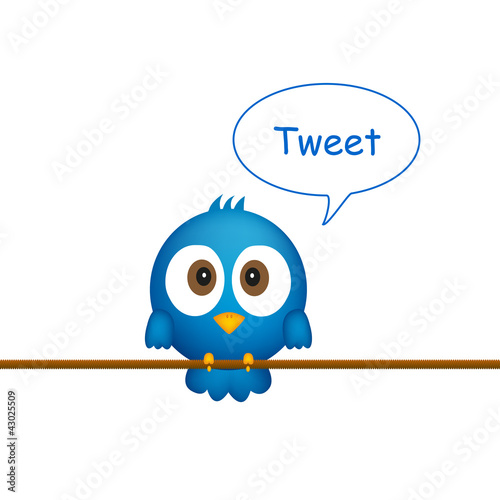 Blue bird sitting on rope, singing