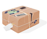 Mail Package Illustration