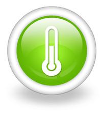 "Light Green Icon ""Thermometer / Temperature"""