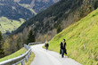 Wandern in den österreichischen Alpen