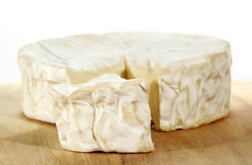 Camembert creamy cheese
